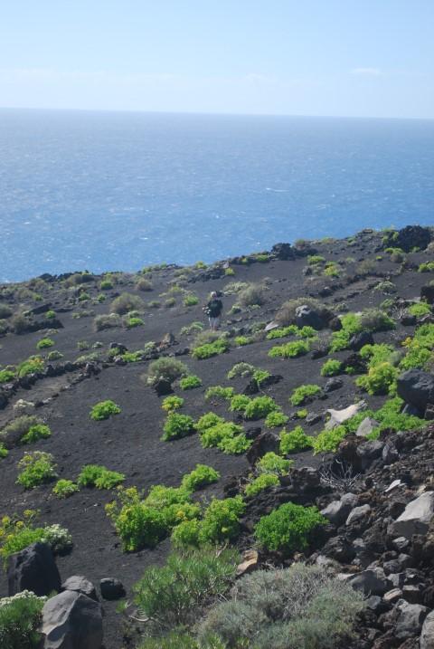 ruta-de-volcano-2
