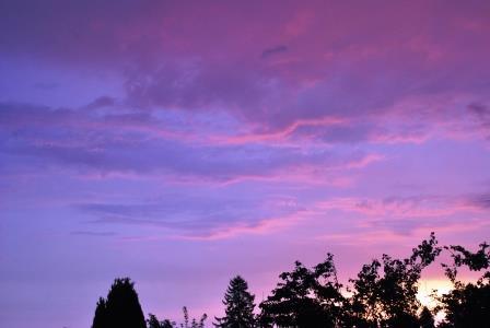 Morgenlicht DSC_1520