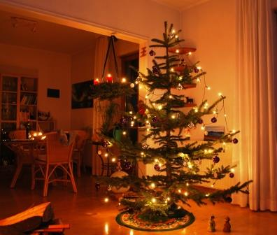 Weihnachtsbaum DSC_2558